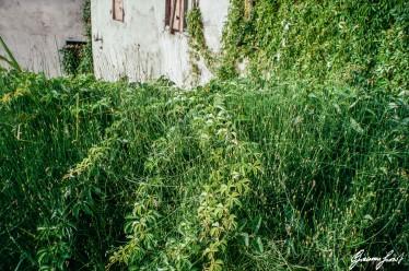 ScanImage9600